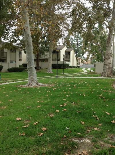 Moorpark Rental For Rent: 15282 Campus Park Drive #A