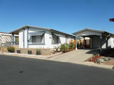 Ventura Single Family Home For Sale: 86 Poinsettia Gardens Drive