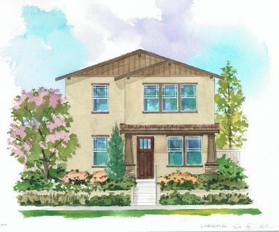 Ventura Single Family Home For Sale: 285 Chicksaw Street