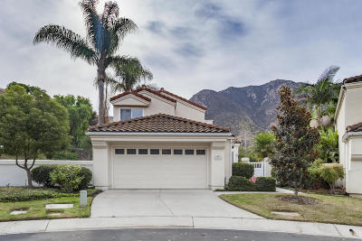 Camarillo Single Family Home For Sale: 6435 Corte Campina