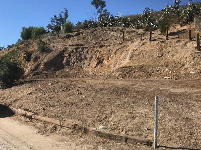 Moorpark Residential Lots & Land For Sale: 1179 Walnut Canyon Road