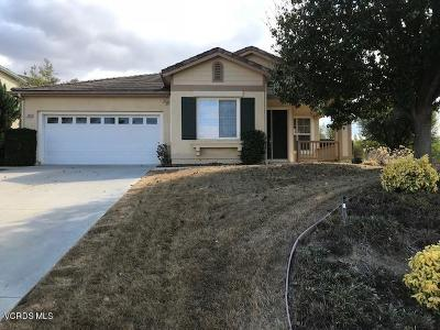 Single Family Home For Sale: 3324 Pine View Drive