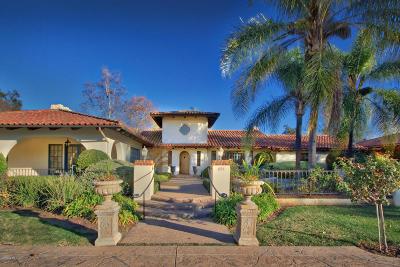 Ojai Single Family Home For Sale: 895 Oak Grove Court