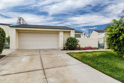Ventura Single Family Home For Sale: 8010 Denver Street