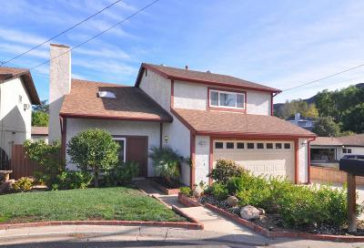 Newbury Park Single Family Home For Sale: 126 Beech Road