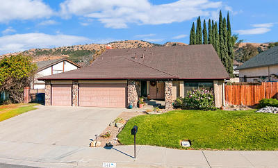 Fillmore Single Family Home For Sale: 541 Stonehedge Drive