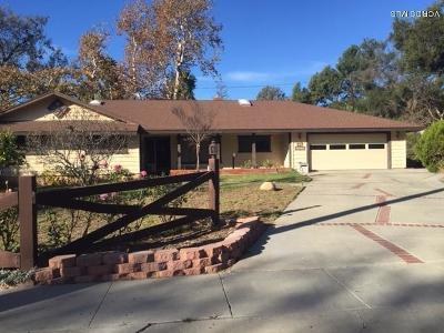 Ojai Single Family Home For Sale: 1215 Daly Road