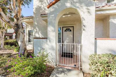 Camarillo Single Family Home For Sale: 211 Camino Toluca
