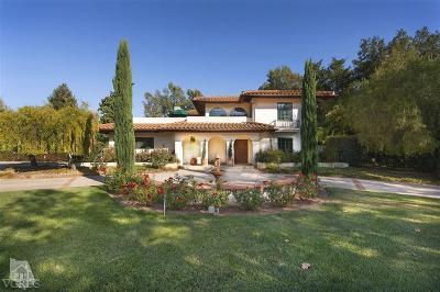 Ojai Single Family Home For Sale: 12196 Linda Flora Drive