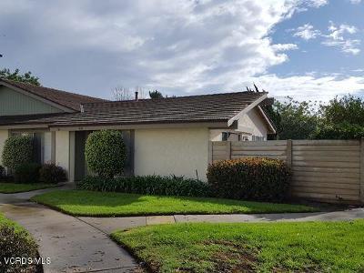 Oxnard Rental For Rent: 664 Holly Avenue