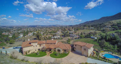 Newbury Park Single Family Home For Sale: 2250 Alice Ann Road