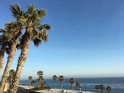 Ventura County Single Family Home For Sale: 11866 Starfish Lane