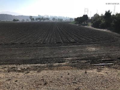 Ventura County Residential Lots & Land For Sale: Rice Street