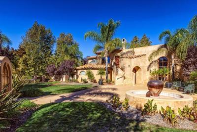Ojai Single Family Home For Sale: 723 Oak Grove Court