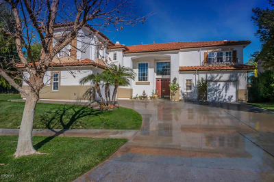 Simi Valley Single Family Home For Sale: 213 Sycamore Grove Street