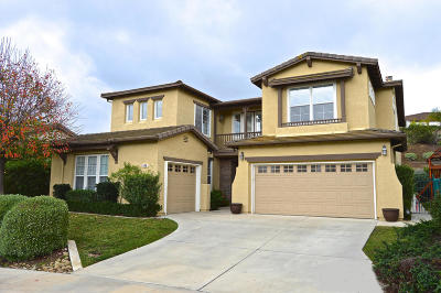 Newbury Park Single Family Home For Sale: 448 Via Del Lago