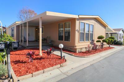 Ventura Mobile Home For Sale: 4700 Aurora Dr #55 Drive