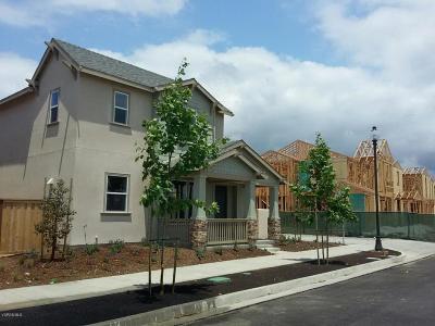 Ventura Single Family Home For Sale: 10763 Delphinium Drive