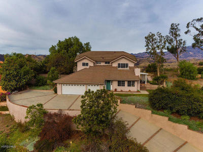 Santa Paula Single Family Home For Sale: 425 Monte Vista Drive