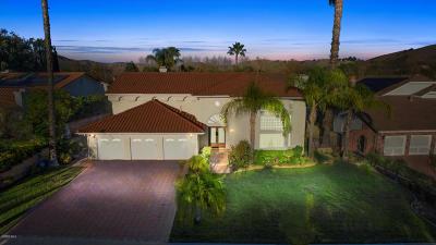 Agoura Hills Single Family Home For Sale: 29201 Laro Drive