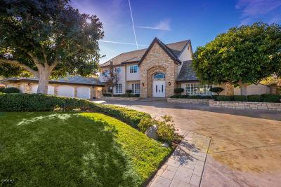 Simi Valley Single Family Home For Sale: 493 Sinaloa Road