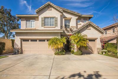 Newbury Park Single Family Home For Sale: 4654 Calle San Juan