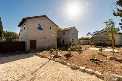 Camarillo Single Family Home For Sale: 84 Neish Street