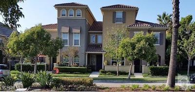 Camarillo Rental For Rent: 3310 Rockhampton Drive