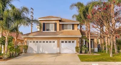 Simi Valley Single Family Home For Sale: 206 Cliffwood Drive