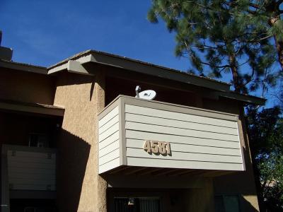 Ventura County Single Family Home Active Under Contract: 4581 Alamo Street #H