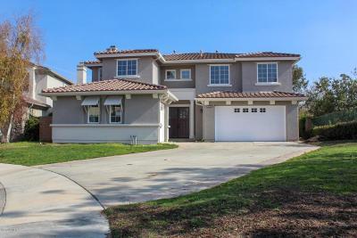 Moorpark Single Family Home For Sale: 4606 Rio Bravo Court