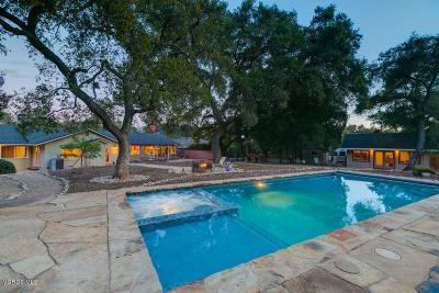 Single Family Home For Sale: 802 El Toro Road