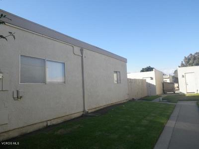Oxnard Single Family Home Active Under Contract: 2951 W Hemlock Street #C