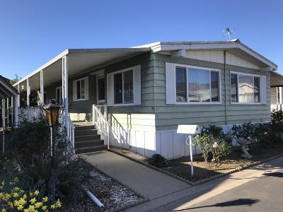 Mobile Home Active Under Contract: 39 Don Antonio Way