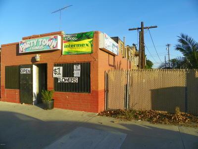 Ventura Residential Lots & Land For Sale: Violeta Street