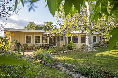 Ojai Single Family Home For Sale: 2036 Grand Avenue