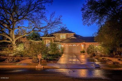 Westlake Village Single Family Home For Sale: 31755 Blue Meadow Lane