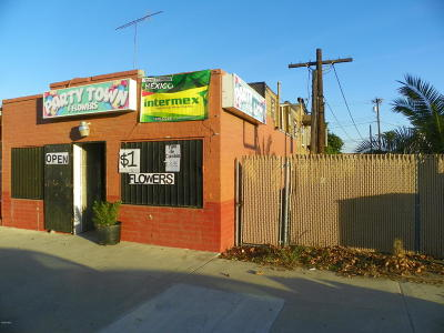 Ventura Residential Lots & Land For Sale: 11036 Violeta Street