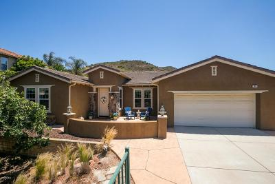 Newbury Park Single Family Home For Sale: 64 Via Magnolia
