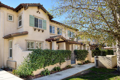 Newbury Park Single Family Home For Sale: 176 Via Katrina