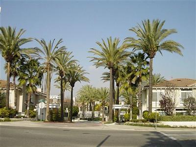 Moorpark Rental For Rent: 11751 Villageview Court