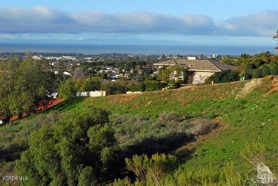 Ventura County Residential Lots & Land For Sale: Vista De Ventura (Lot 8)