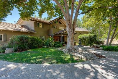 Ojai Single Family Home For Sale: 10901 Creek Road
