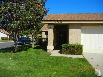 Ventura County Rental For Rent: 37201 Village 37