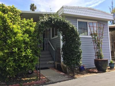 Ventura Mobile Home Active Under Contract: 9097 Ventura Avenue #15