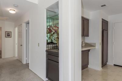 Camarillo Single Family Home For Sale: 441 Sobre Colinas Place