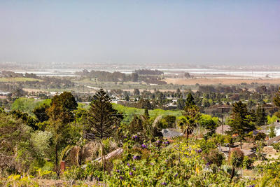 Ventura Residential Lots & Land For Sale: 1005 Horizon Drive