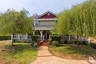 Ojai Single Family Home For Sale: 990 Loma Drive