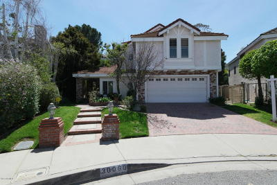 Agoura Hills Single Family Home For Sale: 30060 Torrepines Place