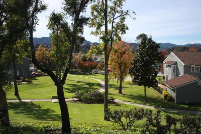 Westlake Village Single Family Home For Sale: 32110 Lake Meadow Lane